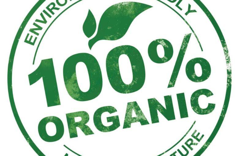 organic04-1024x1024