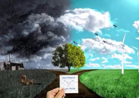 economy_and_ecology