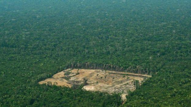 фото з сайту www.bbc.com